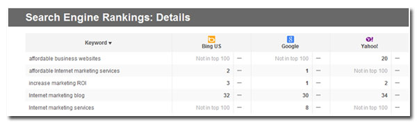 search engine rankings details