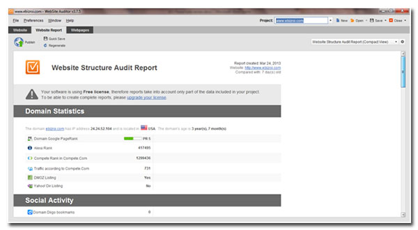 website structure audit report