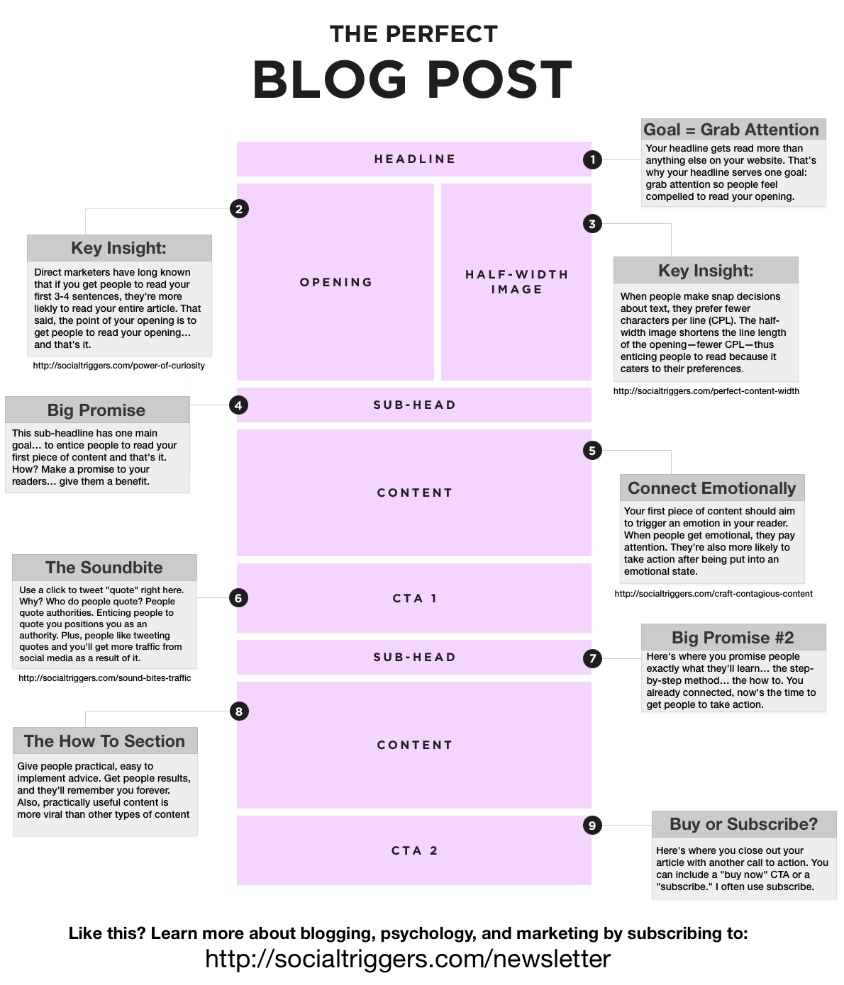 The Perfect Blog Post by SocialTriggers.com