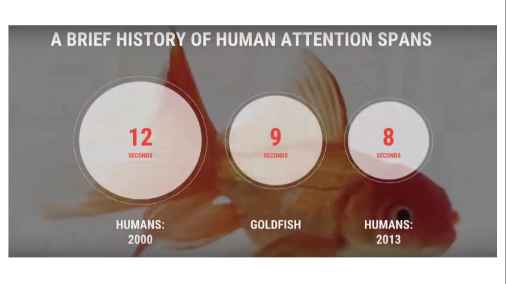 Goldfish Now Thought to Have a Longer Attention Span than Humans